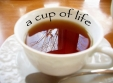 A Cup of Life. The Next Cup of Tea